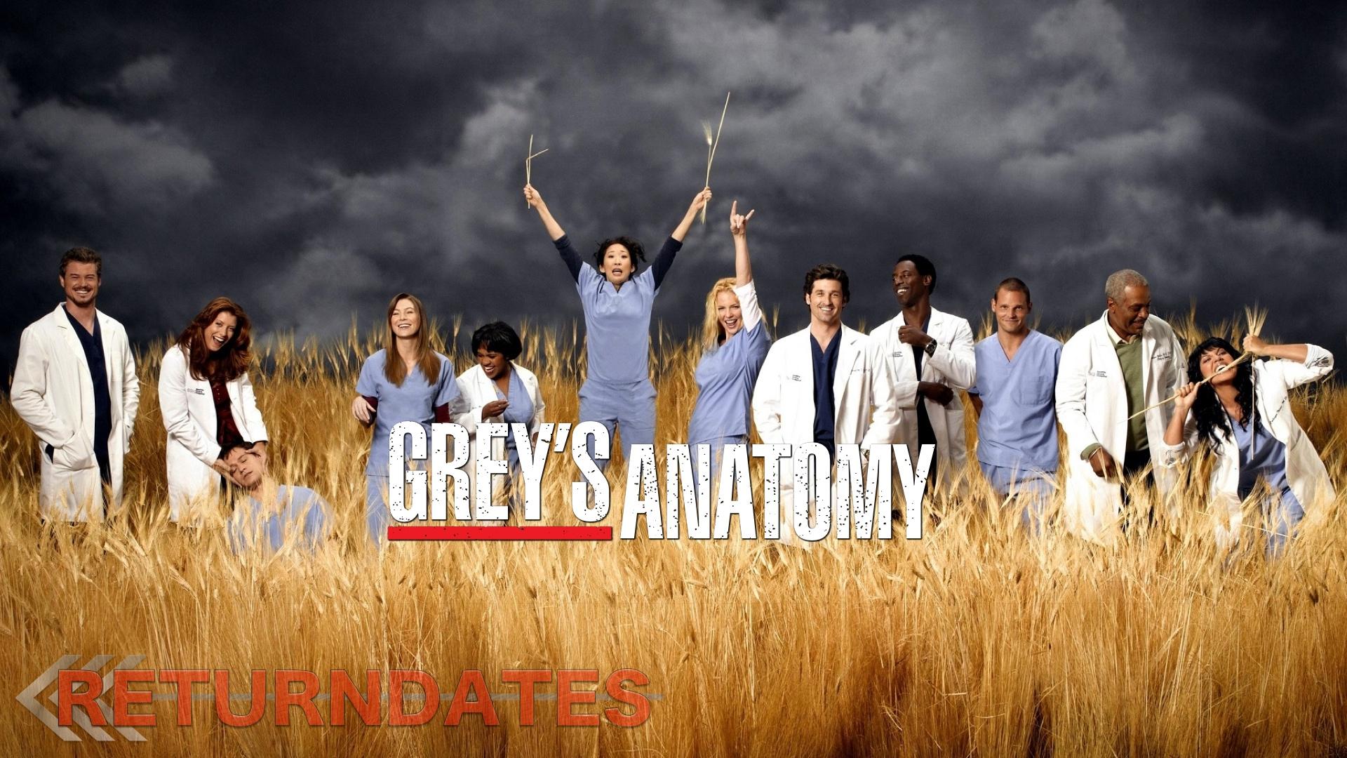 GreyS Anatomy Tv